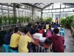 151111 Kadoorie Farm visit F4 Biology students (1) (Medium).JPG