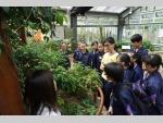 151111 Kadoorie Farm visit F4 Biology students (11) (Medium).JPG